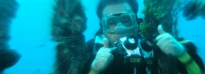 dicapac waterproof case